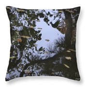 A Place To Dream Of Throw Pillow