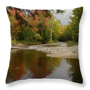 A Place To Enjoy Throw Pillow
