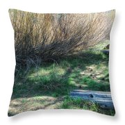 A Place To Hide Throw Pillow