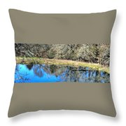 A Place To Ponder 055 Throw Pillow