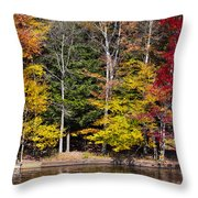 A Place To Relax In The Adirondacks Throw Pillow