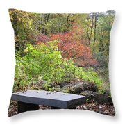 A Place To Think II Throw Pillow