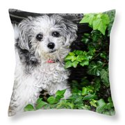 A Portrait Of Tiny Throw Pillow