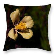 A Pretty Flower In The Sun Throw Pillow