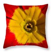 A Prim Rose Throw Pillow