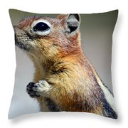 A Profile In Chipmunk Throw Pillow