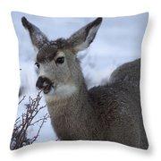 A Quick Nibble Throw Pillow