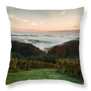 A Quiet Morning On The Hill Throw Pillow by Davorin Mance