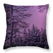 A Quiet Snowy Night Throw Pillow