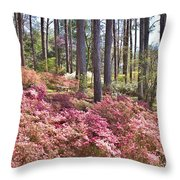 A Quiet Spot In The Woods Throw Pillow