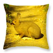 A Rabbit In My Path Throw Pillow