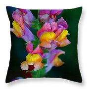 A Rainbow Flower Throw Pillow