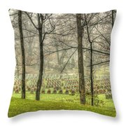A Rainy Day At The Cemetery Throw Pillow