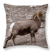 A Ram Climbing  Throw Pillow