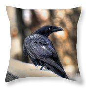 A Raven In Winter Throw Pillow by Skye Ryan-Evans