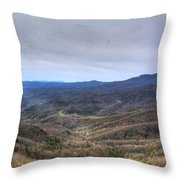 A Ray Of Light 1 Throw Pillow