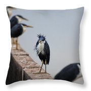 A Real Bad-hair Day Throw Pillow