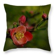 A Red Flower Throw Pillow
