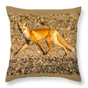 A Red Fox Throw Pillow