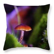 A Red Mushroom  Throw Pillow
