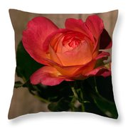 A Red Rosr Against A Weathered  Wood Background Throw Pillow