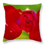 A Red Wet Rose Throw Pillow