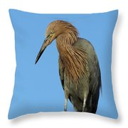 A Redhead On A Roof Throw Pillow