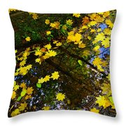 A Reflection Amongst The Leaves Throw Pillow