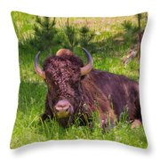 A Resting Bison Throw Pillow