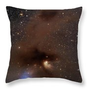 A Rich Region Of Reflection Throw Pillow