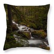 A River Passes Through Throw Pillow by Mike Reid