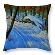 A Road Still Traveled Throw Pillow