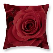 A Rose Within A Rose Throw Pillow