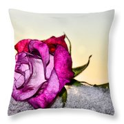 A Rose In Winter Throw Pillow