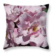 A Rose Named Blueberry Hill  Throw Pillow