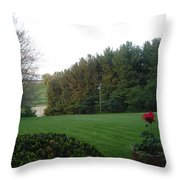A Rose With A View Throw Pillow