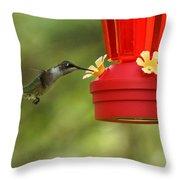 A Ruby-throated Hummingbird Throw Pillow