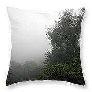 A Rural Pennsylvania Mist Throw Pillow