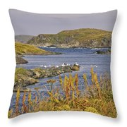 A Safe Harbor In Newfoundland Throw Pillow