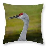 A Sandhill Crane Throw Pillow