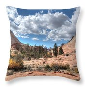 A Sandstone Valley Throw Pillow