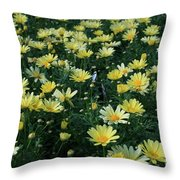 A Sea Of Yellow Daisys Throw Pillow