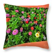 A Sea Of Zinnias 06 Throw Pillow
