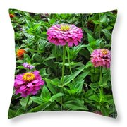 A Sea Of Zinnias 09 Throw Pillow
