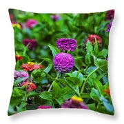 A Sea Of Zinnias 14 Throw Pillow