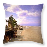A Seagull On The Dungeness Spit Throw Pillow