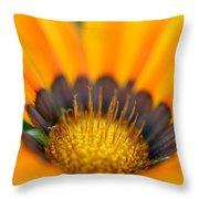 A Secret Garden Throw Pillow