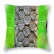 A Section Of A Tree Throw Pillow