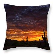 A Sentinel Sunset  Throw Pillow