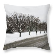 A Sequence Of Trees Throw Pillow